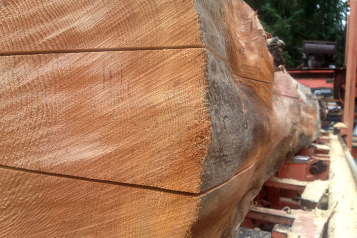 Chainsaw milling salvaged logs