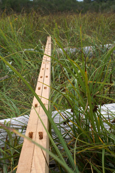 traditional kayak building hand-drilled mortises